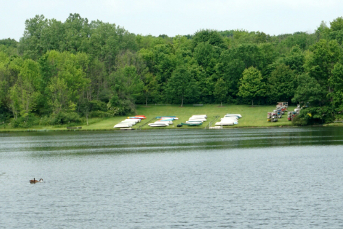 Canoes and Water at Hudson Springs Park