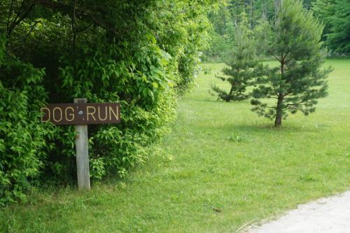 Dog Run Hudson Springs Park