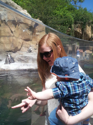Mom and Son at Penguin Tank Akron Zoo