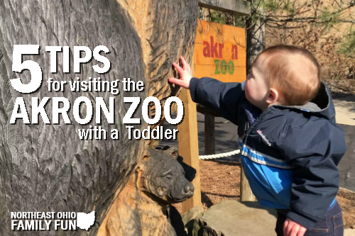 Visiting the Akron Zoo with a Toddler