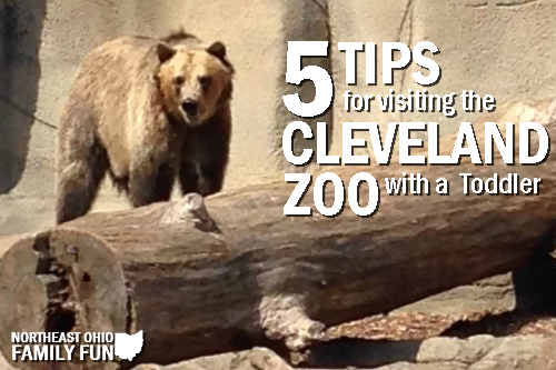 Visiting the Cleveland Zoo with a Toddler