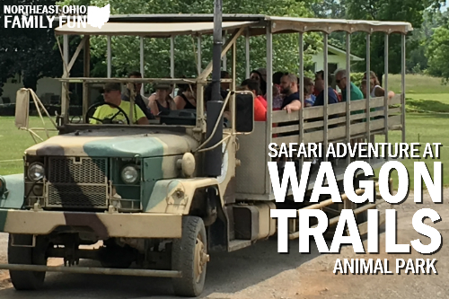 Safari Adventure Wagon Trails Animal Park