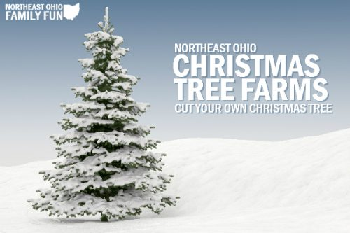 Northeast Ohio Christmas Tree Farms