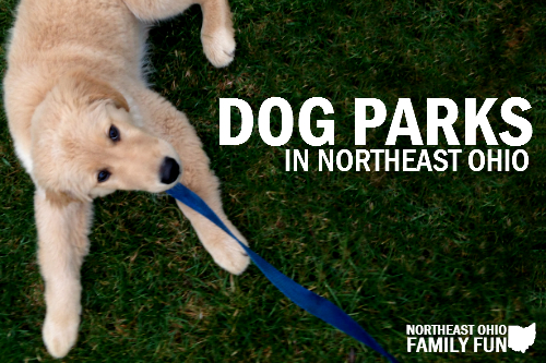 Dog Parks in Northeast Ohio