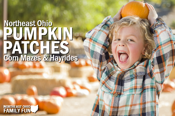 Northeast Ohio Pumpkin Patches, Corn Mazes & Fall Festivals