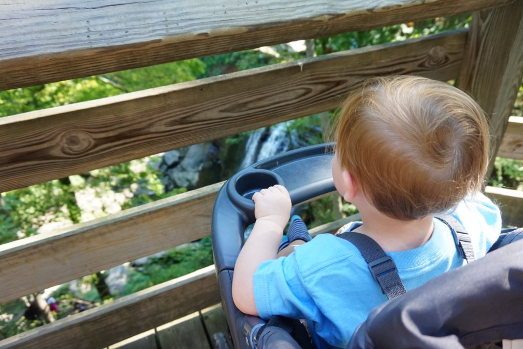 Toddler Looking at Brandywine Falls from Stroller