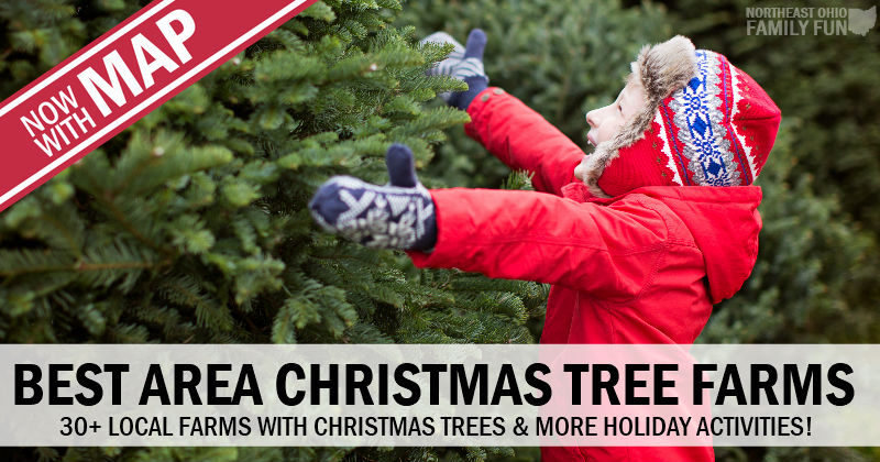 Best Local Christmas Tree Farms – 30 Delightful Farms You'll Love {2018}
