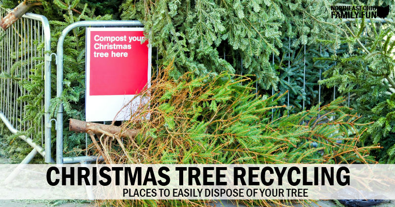 Christmas Tree Recycling – Local Places to Easily Dispose of your Tree