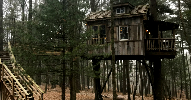 Old Pine Treehouse in Ohio