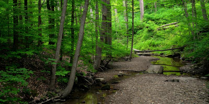 Cuyahoga National Park Blue Hen Falls