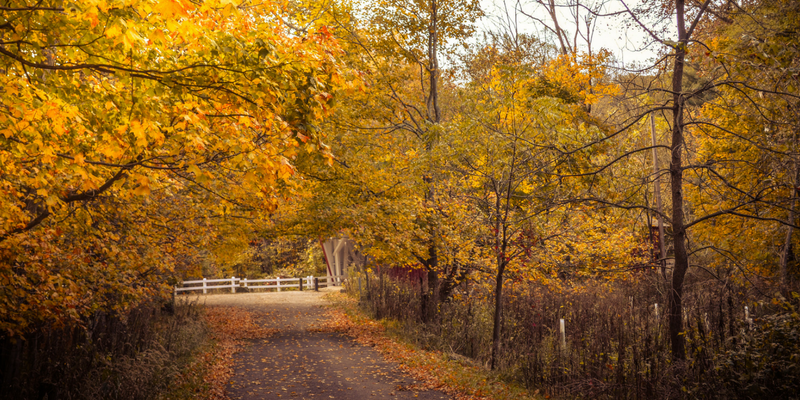Cuyahoga Valley National Park in Fall