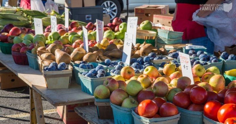 Farmers Markets in Northeast Ohio: Get Delicious Produce from Local Farms