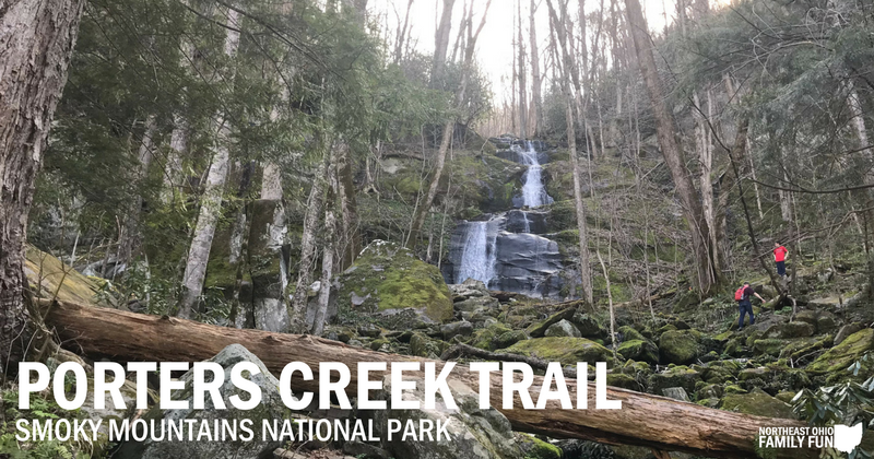 Porters Creek Trail – Wildflowers & Waterfall