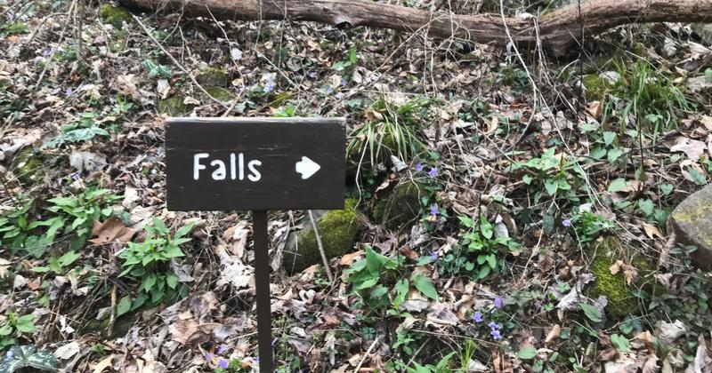 Spruce Flats Falls Trail Head Sign