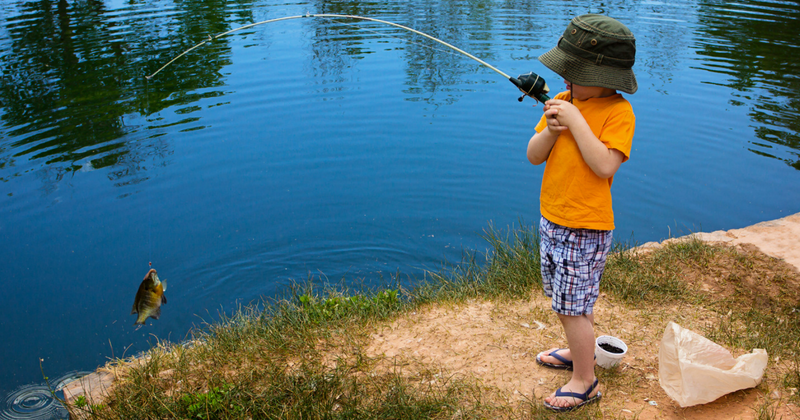 Teaching Kids to Catch a Fish