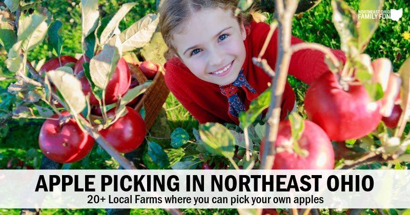 20+ Local Farms with the Best Apple Picking in Northeast Ohio