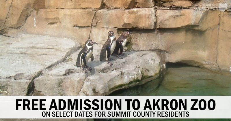 FREE Admission to Akron Zoo for Summit County Residents