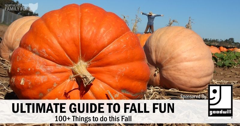 Ultimate Fall Fun Guide – 100+ Things to do this Fall