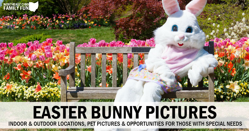 Best Places for Easter Bunny Pictures