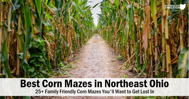 Best Corn Mazes in Northeast Ohio – You'll Want to Get Lost in These! {2020}