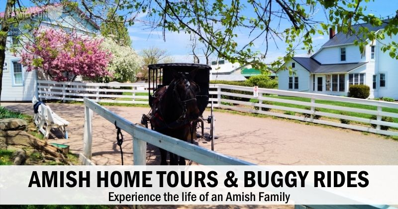 Experience the Amish Way of Life with these Home Tours and Buggy Rides