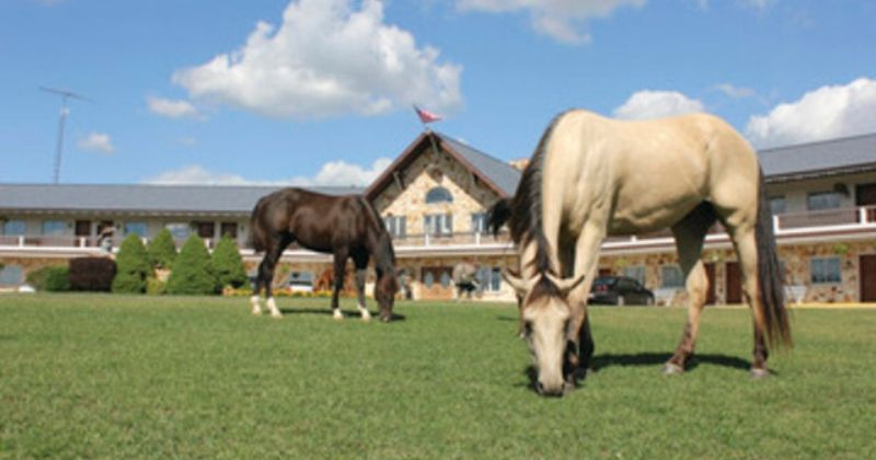 Amish Country Riding Stables, Things to Do in Amish Country