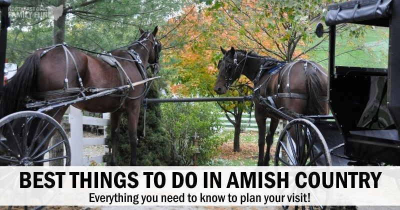 Best Things to Do in Amish Country – Plan Your Perfect Escape!