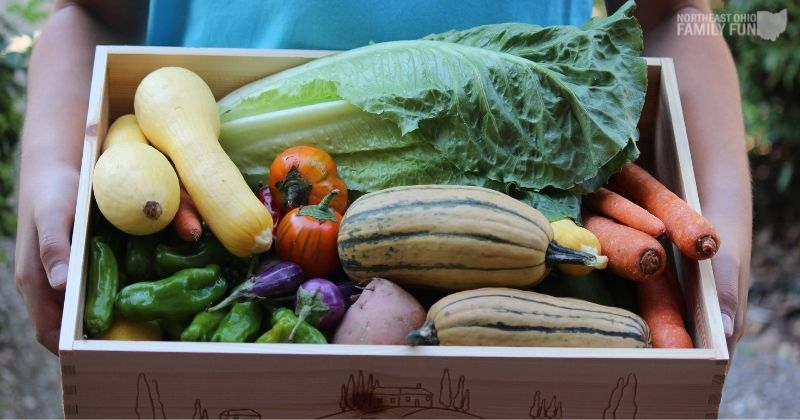 CSA in Northeast Ohio – Get Fresh Food Directly from Local Farms
