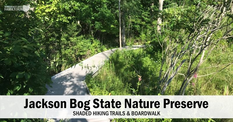 The Jackson Bog State Nature Preserve – Wooded Trails & Scenic Boardwalk
