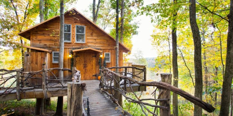 The Mohicans Treehouse Resorts