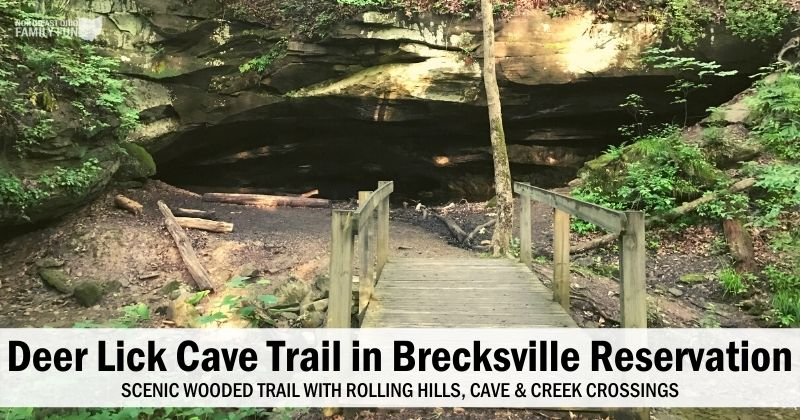 Deer Lick Cave Trail – Scenic Wooded Trail in the Brecksville Reservation