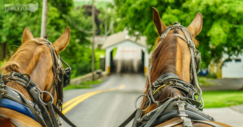 Best Things to do in July in Ohio – Amish Country, Concerts, Ice Cream & More